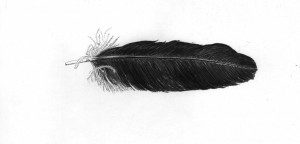 Maran Mantra Using Crow Feather