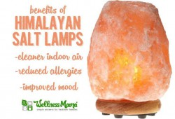 What are Salt Lamps?